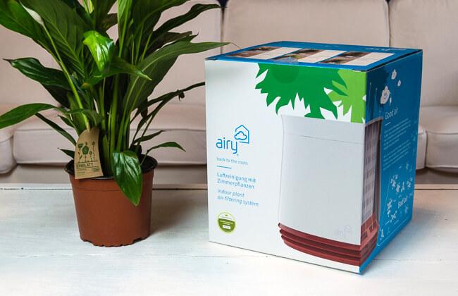 Produkttest Airy Luftreinigung D. Pflanzen | Testerschwester Pflanzen Fur Frische Luft Nutzen